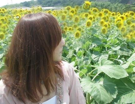 Himawari_40